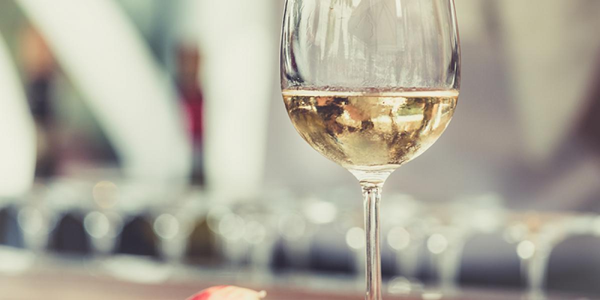 Choix et dégustation de vins à la période estivale : les conseils de la Maison Gabriel Meffre
