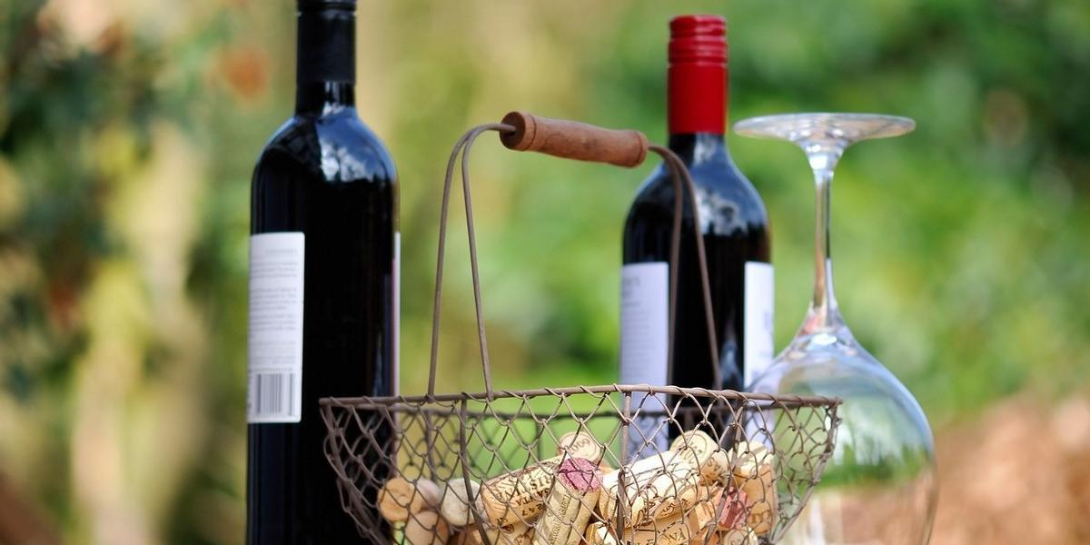 Vin savant ou comment briller en société : du service à la dégustation d'un vin